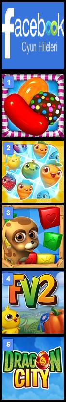 Facebook Oyun Hileleri