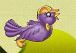 Salak Kuş Oyunu